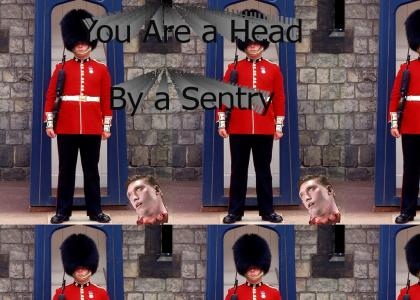 You are a head by a sentry