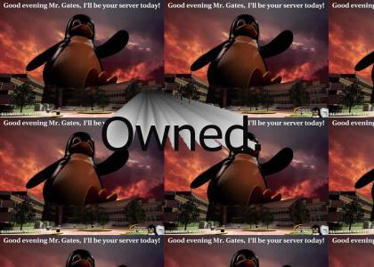 Linux penguin > Microsoft