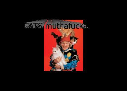 CATS!!!!!!!!