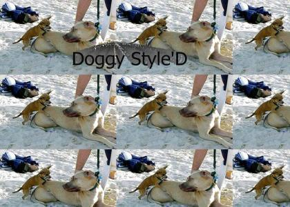 Doin' it Doggy Style!