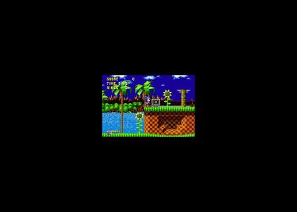 Tribute to SONIC THE HEDGEHOG (Including Lost Levels)