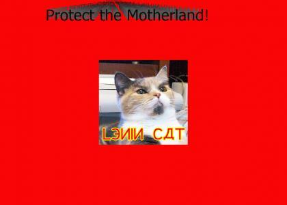 Lenin Cat!