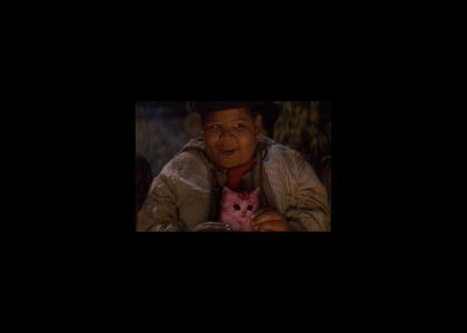 The Lost Boys Eat Kittens