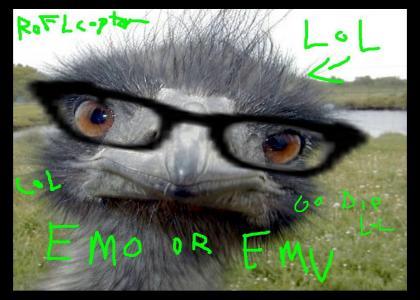 EMO OR EMU LOL