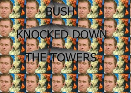 BUSH KNOCKED DOWN THE TOWERS