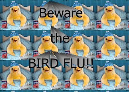 BIRD FLU!! Know the symptoms!