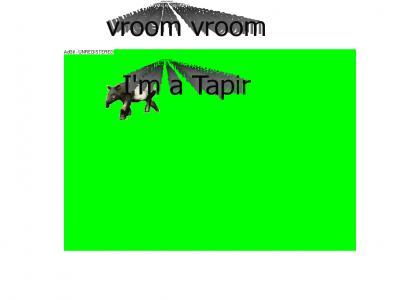 vroom vroom i'm a tapir