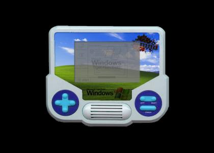 Windows in a Tiger Handheld