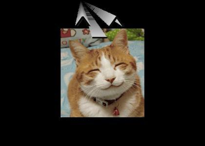 ^_^ CAT