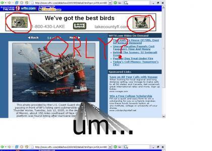 secret orly? ad