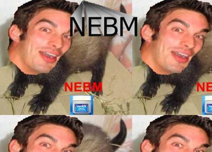 DR-NEBM ^_^