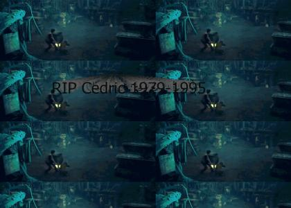 BREAKING -- Death Cat Was There when Cedric Died