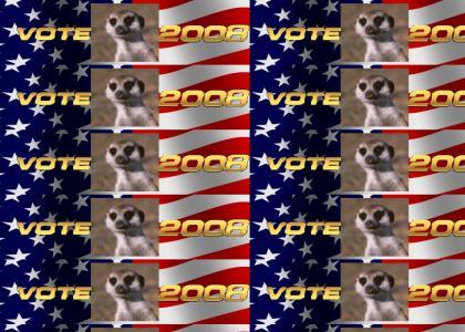 Vote Meerkat 2008