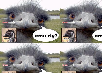 emu rly?