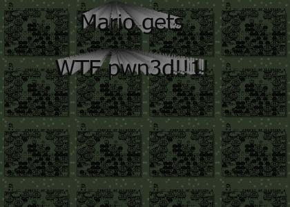 Secret Mario Level lol