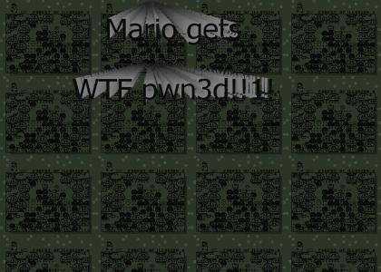 Secret Mario Level lol