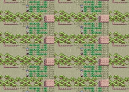OMG, Secret Pokemon Nazi Forest