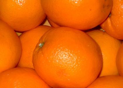 |||||||||||||||||||||||||||||||||||||||||||||||||||||||||||||||||||||||||||||||||||||||||||||||||||||||||||||||||oranges||||||||