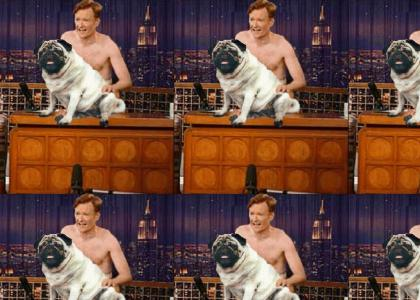 Doggy Doesn't Want To Have Sex With Conan