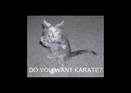 Do You Want Karate!?