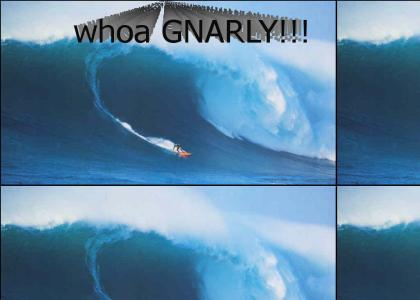 gnarly dude!!!!