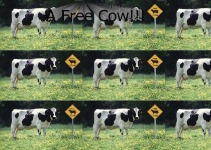A Free Cow