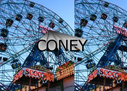My favorite amusement park is...