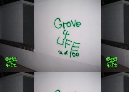 Grove Street 4 Life is real?