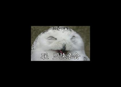 O RLY? [Japanese Edition]