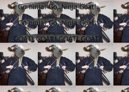 Ninja Goat!