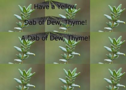 A Dab Of Dew