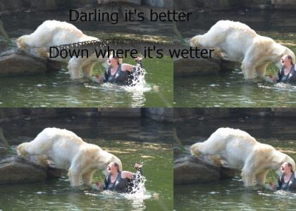 Polar Bear Catches a Whale