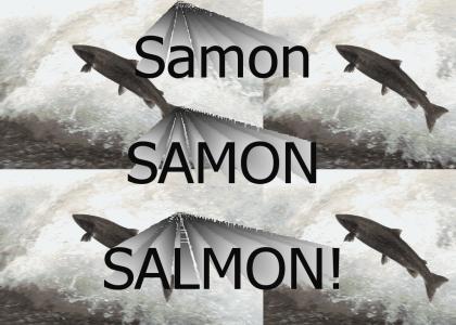 Samon Samon Salmon