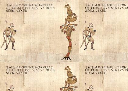 Medieval Gravity Cat