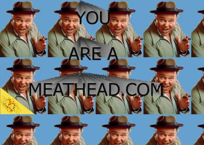 YOU ARE A MEATHEAD.COM