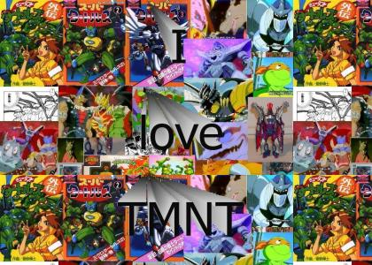 TMNT Japanese version (Ninja Turtles)