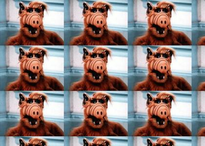 A site to appeal to ALF fans