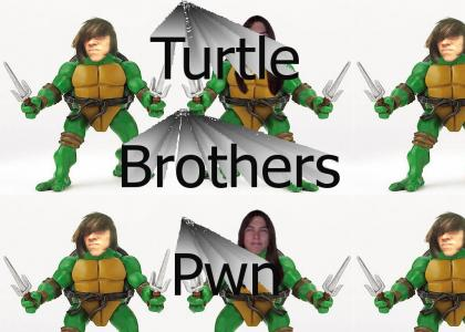 Turtle Brothers
