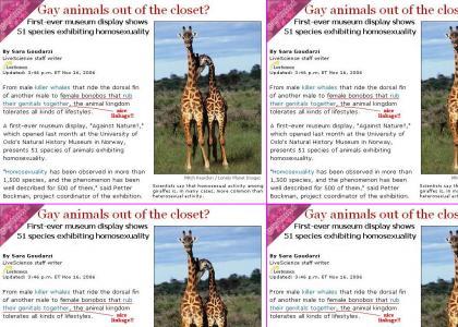 GAYTMND - Gay Giraffes Love Techno