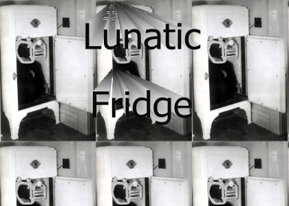 Lunatic Fridge