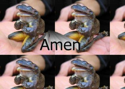 Praying frog Gloria