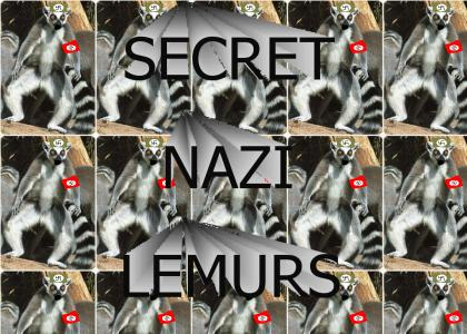OMG Secret Nazi Lemurs!