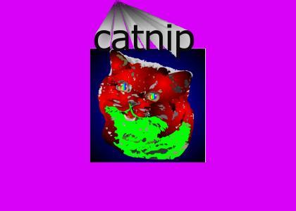 Happycat's Nip Trip