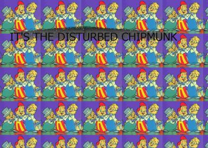 Disturbed Chipmunks