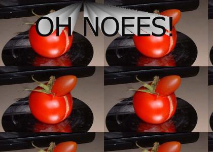 Rude Cantina Fruit