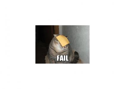 Cheese owns Fail Cat.