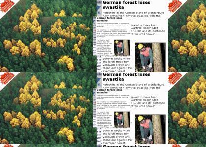 YTMNDTMND: OMG, secret nazi forest nazi forest!