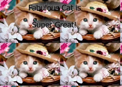 GAYTMND: Fabulous Cat is Super Great!