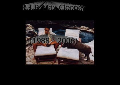 R.I.P. Max