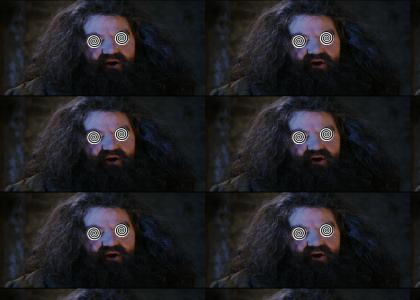 Hagrid Tells the Truth